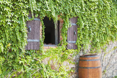 Old-fashioned stone wall Stock Images