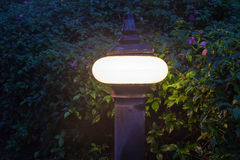Old fashioned street lamp in evening Stock Photo