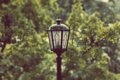 An old fashioned street light. On the background of green trees Royalty Free Stock Image