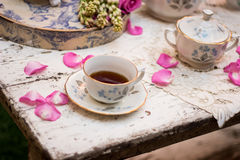 Old fashioned tea cup in the garden royalty free stock images