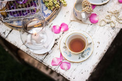 Old fashioned tea set in the garden. Tea pot, flowers and porcelain royalty free stock images