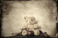 Old fashioned teddy bear Stock Photography