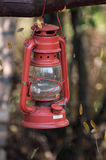 Old fashioned vintage oil lantern lamp hanging on a branch Royalty Free Stock Photos