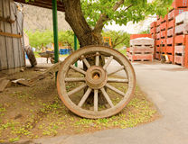 An old-fashioned wagon wheel leaning against a tree Royalty Free Stock Photo