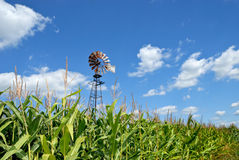 Old-fashioned Windmill Royalty Free Stock Images