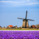 Old fashioned windmill in Netherlands Stock Photos