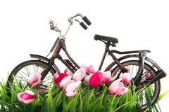Old female bike Royalty Free Stock Images