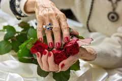 Old female hands holding roses. Senior woman hands with red nails and silver ring holding beautiful bouquet of red roses flowers Stock Photo