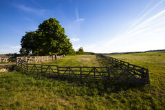 Old a fence Royalty Free Stock Images