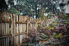 Old fence in the Australian bush stock photography
