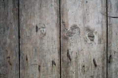 The old fence background. The old fence with nails background Royalty Free Stock Photos