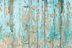 The old fence boards with chink. Painted light blue paint. Stock Photo