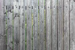 Old fence of boards with faded paint. Empty gray background. Texture of wooden planks. Old fence of boards with faded paint. Empty gray background. Fine texture royalty free stock photos