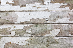 Old fence boards with white paint flaking off Royalty Free Stock Photography