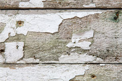 Old fence boards with white paint flaking off Stock Image