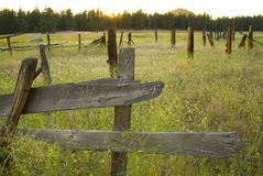 Old fence in the field. A closeup of part of an old wooden fence in a field royalty free stock photography