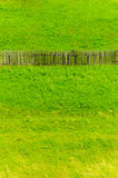 Old fence grass landscape copy space Stock Image