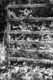 The old fence in Harz b&w detail Stock Photography