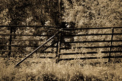 The old fence in Harz sepia Royalty Free Stock Images