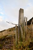 The old fence line. Royalty Free Stock Photography