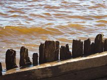 Old fence made of sharp wooden stakes. Old fence made of sharp wooden stakes against the dark water royalty free stock images