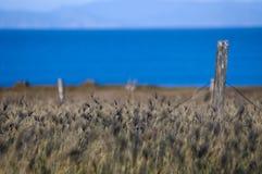 Old Fence near the sea stock photos
