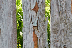 Old fence needs to be painted. Summer day Royalty Free Stock Photo