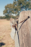 Old fence in outback Australia Stock Images