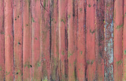 Old fence planks green and brown texture Royalty Free Stock Image