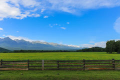 An old fence protects a beautiful green glade with yellow flowers amidst the mountains Royalty Free Stock Photo
