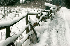 The old fence Stock Photography