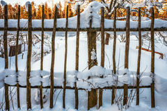 The old fence Stock Image