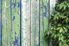 Old fence. Texture of old wooden fence painted in green and blue Stock Photo