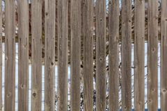 Old fence of wooden boards as background.  royalty free stock image