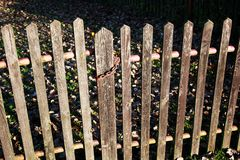 Old fence. Old wooden fence with chain royalty free stock image