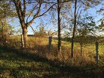 Abandoned fence stock photo