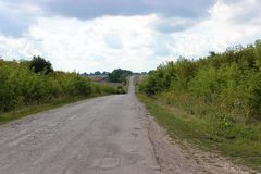 Field asphalt road on the roadside are bushes royalty free stock photos