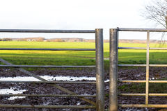 Old Field Gate Roadside Sunny Day Background Royalty Free Stock Photography