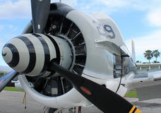 Old fighter plane engine. Old fighter plane radial engine and propeller close-up. 1956 T-28C Trojan built by North American Aviation Stock Photo