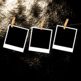 Old Film Frame Template. Old photo film blanks hanging on a rope held by clothespins Royalty Free Stock Photography