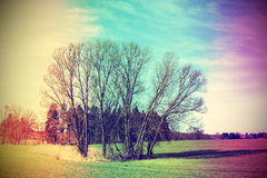 Old film stylized rural landscape Royalty Free Stock Photography