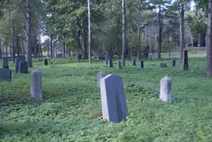 The old Finnish cemetery among the trees stock photo