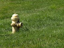 Old Fire Hydrant. Among Green Grass royalty free stock images