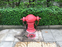 Old fire hydrant with the large valve. Royalty Free Stock Images