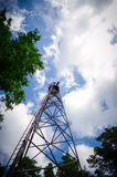 Old fire tower in the forest Stock Images