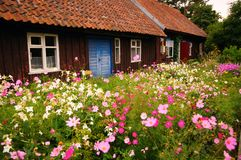 Old fishermens house. With flowery front lawns, in Nida, a seaside village in Lithuania Stock Photography