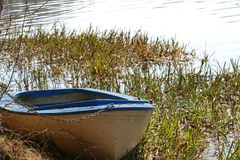 Old fishing boat locked with a padlock and chain in the reeds royalty free stock image