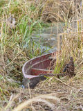 Old fishing boat in the reeds Stock Photos
