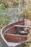 Old fishing boat in the reeds Stock Photo