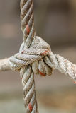 Old fishing boat rope with a Tied Knot Royalty Free Stock Image